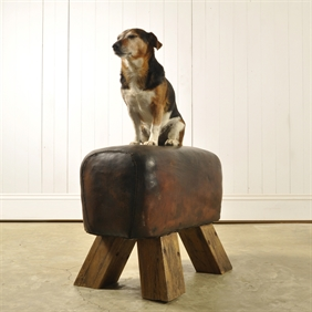 Vintage Leather Vaulting Horse / Stool